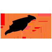 alibaba.com Clone Site